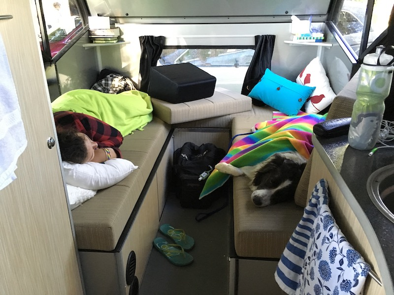 interior of Alto 1713 with girl and border collie taking an afternoon nap during a springtime adventure glamping weekend near Orillia