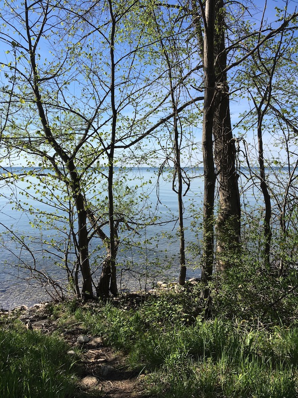 view over Lake Simcoe from Water's Edge Trail, South Campground
