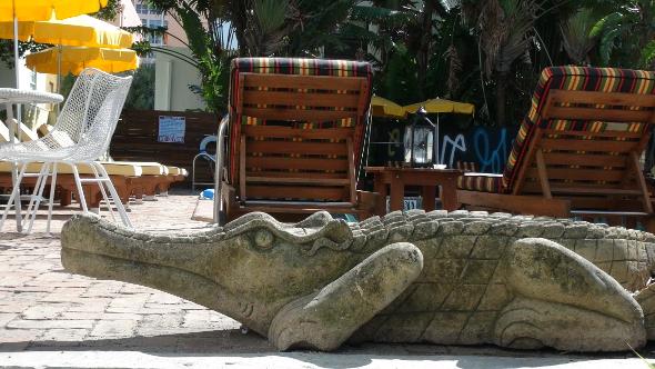Freehand Miami Stone Alligator