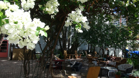 Cascading flowers over Freehand Miami Courtyard!