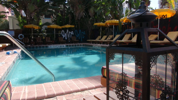 Freehand Miami Pool LOVE