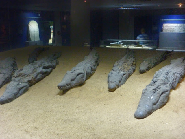 Crocodile Mummies at the Temple of Kom Ombo on the Egyptian Nile.