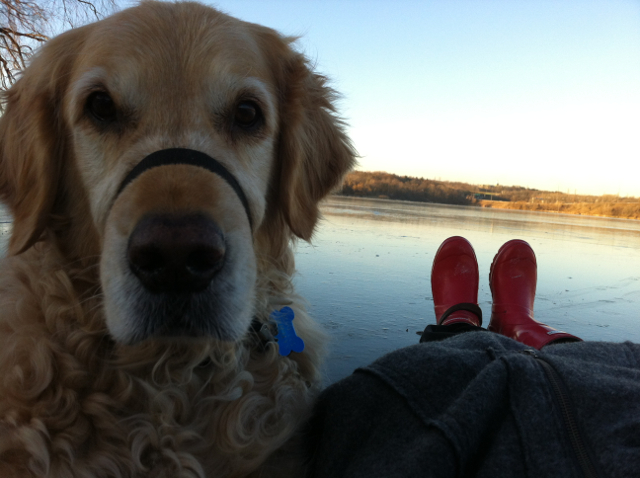 Satchmo and the Roamancing Red Boots at Cootes Paradise