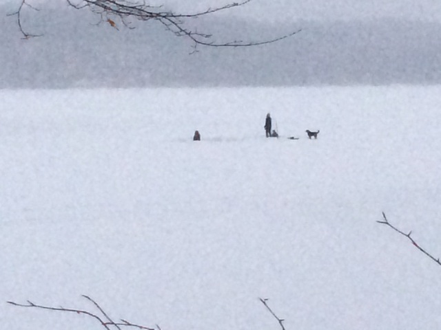 Hockey on the pond at Cootes Paradise