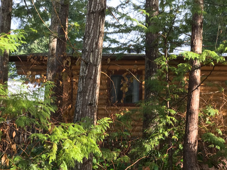 Cabin at Cusheon Lake Resort on Salt Spring Island