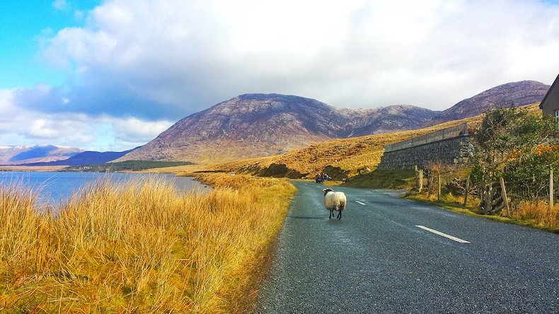 Connenmara along the Wild Atlantic Way, as photographed by Larah Vidotto.